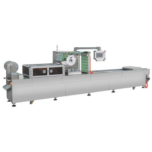 Single Chamber Food Vacuum Packing Machine (DZ-280) #1 image