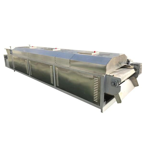 Saibainuo Continuous Vegetable Dehydrator Cassava Chip Microwave Vacuum Belt Drying Spices and Herbs Chili Drying Sterilizing Dryer #3 image