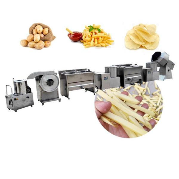 Frozen Fried French Fries Chips Processing Machine Machinery Line #1 image