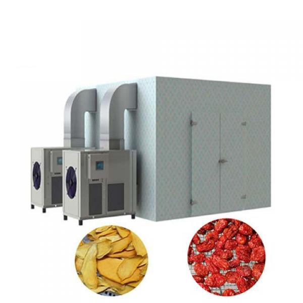 Commercial Dehydrator Fruit and Vegetable Dryer Industrial Food Dehydration Meat Drying Oven Equipment #1 image