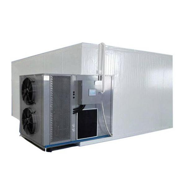 Factory Price Industrial All Temperature Heat Pump Meat Fruit and Vegetable Dehydrator #1 image