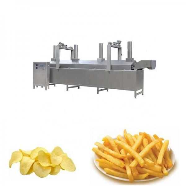 Automatic Chips Frying Machine for Sale #1 image